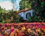 Casas Valleparaizo, Portugalska - last minute